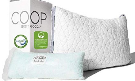 20 Best Pillows For Back Pain